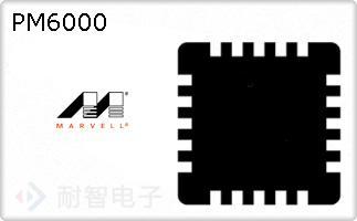 PM6000