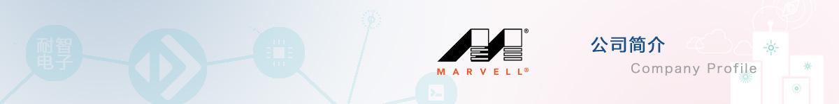 Marvell(美满电子)公司介绍